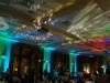 Jungle_wedding_JSI_7